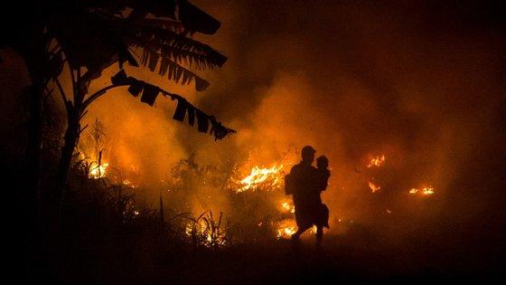 Muitos dos incêndios destinam-se a abrir novas áreas para a exploração agrícola