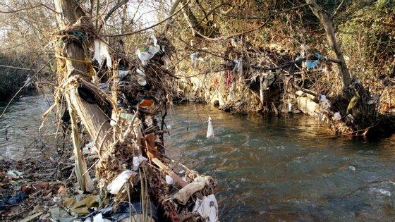 A poluição dos rios provoca a diminuição da biodiversidade afetando toda a cadeia alimentar