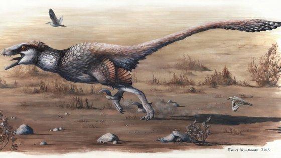 Os fósseis do Dakotaraptor steini foram encontrados no Dakota do Sul na Formação de Hell Creek, uma zona com grande abundância de fósseis de dinossauros.