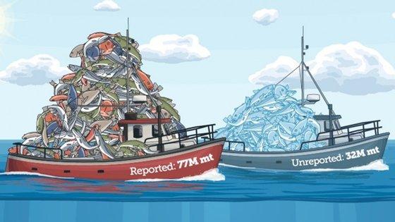 30% das pescas ficaram por registar em 2010