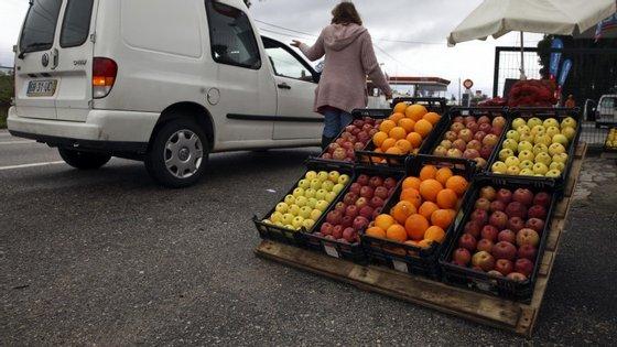 O ministro da Agricultura vai estar em Berlim esta quarta-feira para visitar a Fruit Logistica