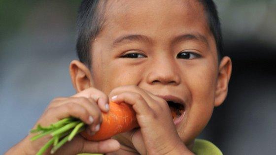 Mastigar vegetais crus exige mais esforço dos músculos do que comer carne crua