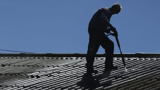 A associação ambientalista diz ter recebido várias queixas de funcionários que se sentem assustados por trabalharem naquelas situações