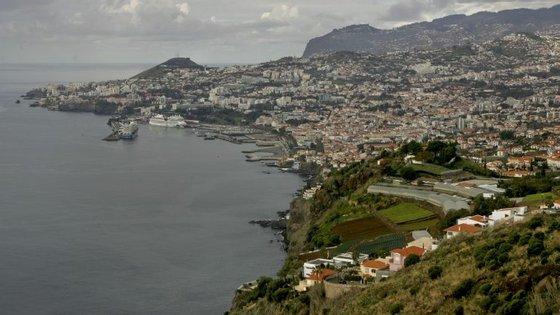 De acordo com os dados da Sociedade de Desenvolvimento da Madeira em 2015 encontravam-se a operar no âmbito do CINM 2.016 entidades