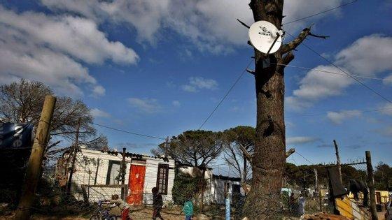 A captura ocorreu através de uma campanha que tem por base procurar e registar casas de infratores
