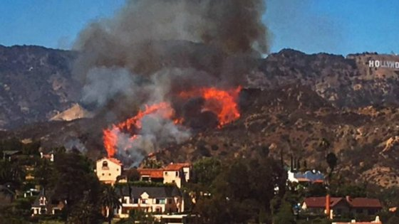 O incêndio numa das colinas de Los Angeles, perto do famoso sinal