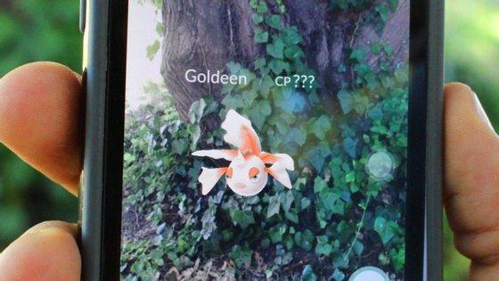 Um Goldeen aparece na aplicação do Pokémon GO