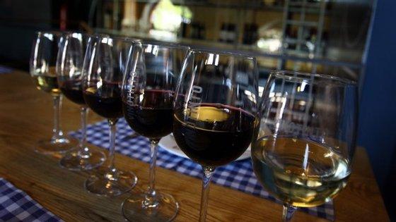 Os vinhos do Alentejo juntam 1.900 produtores de uvas e 235 empresas que comercializam vinhos com a garantia de origem e qualidade atestada