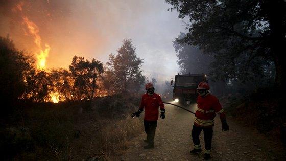 O incêndio em Viseu presumivelmente ateado pelo suspeito detido