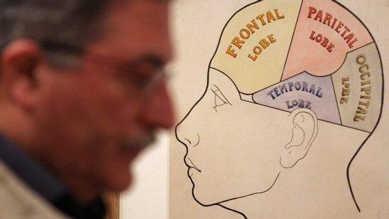 Travis Bradberry reuniu oito características que as pessoas inteligentes desenvolvem de forma menos inteligente