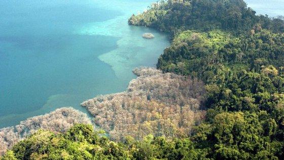 Os cientistas compararam o ADN de dez habitantes das Ilhas Andamão, no Oceano Índico, com o de 60 pessoas da Índia continental
