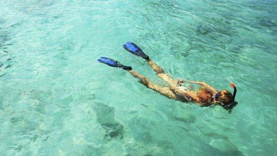 Na Baía da Armação, em Sesimbra, pode experimentar snorkeling este sábado