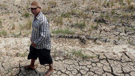A África Austral atravessa pior seca dos últimos 35 anos.