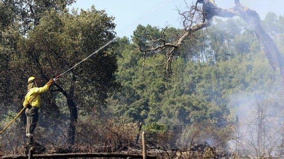 """Quercus diz que a """"falta de ações de prevenção e o abandono crescente das áreas protegidas fazem com que o Parque Nacional da Peneda-Gerês seja pasto das chamas"""""""