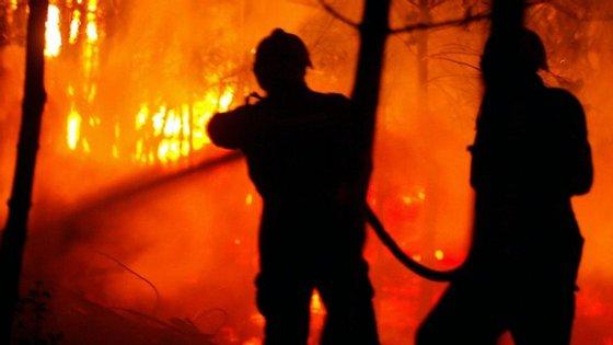 De acordo com a informação da página da ANPC, às 11h00, o incêndio mobiliza 56 operacionais e 17 meios terrestres