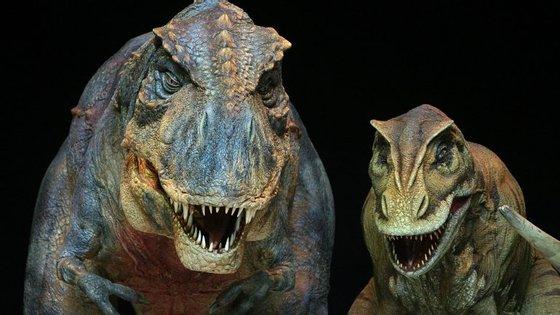 """""""Os abelisaurus eram os grandes carnívoros do fim do período Cretáceo"""", explica Sebastian Apesteguia, que está a estudar a descoberta"""