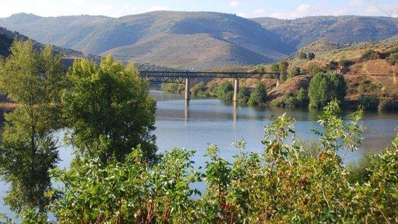 No mês de junho de 2016, na Linha do Douro, o transporte de Grupos aumentou 73%