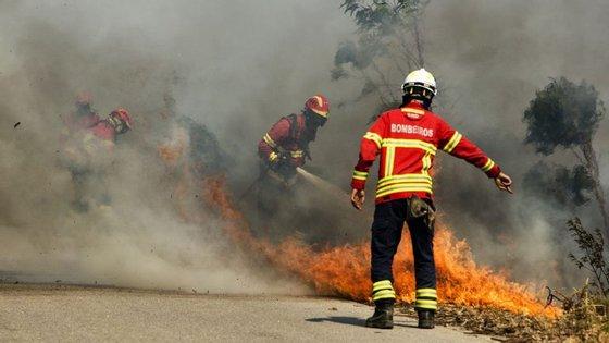 """A campanha """"Cáritas Ajuda as Vítimas dos Incêndios em Portugal"""" permitiu angariar 311.856,67 euros"""