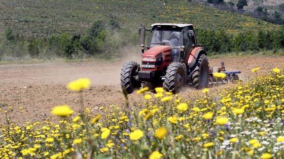 Agricultura e energia apresentam um maior peso no ambiente do que a economia