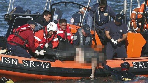 Estima-se que a bordo seguissem aproximadamente 300 passageiros