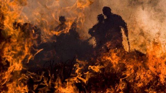 """Como explicação para esta situação, José Manuel Moura apontou a evolução """"muito significativa"""" do dispositivo de combate a incêndios florestais"""