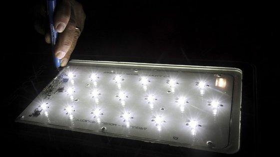 Os investigadores revelaram que o LED branco é potencialmente prejudicial para a saúde humana devido à componente azu muito pronunciada no seu espetro