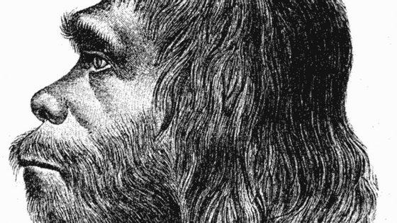 Primeira reconstituição do homem de Neandertal