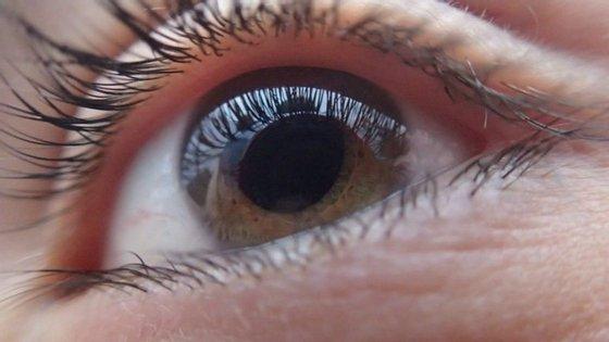 O glaucoma é uma patologia silenciosa cujos efeitos não são reversíveis