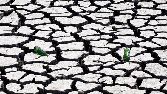 O Fundo de Desenvolvimento Agrário acredita que este ano possa haver um aumento de 16,4% da produção, fruto de melhor irrigação