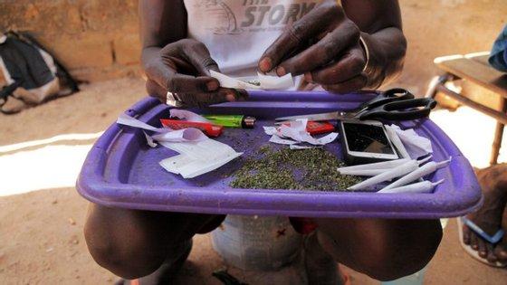 """""""Cada vez mais está a ser visível e muitos jovens guineenses estão a enveredar pelo caminho do consumo de droga"""", afirmou"""