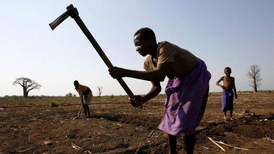 Em 2011, o Governo moçambicano e o FIDA assinaram um Programa Estratégico de Oportunidades Internas, que estabeleceu um quadro para a parceria