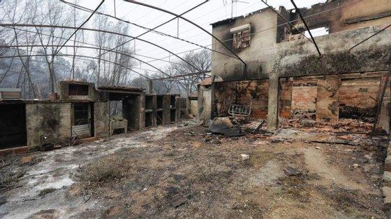 O REVITA foi criado para apoiar as populações e a revitalização das áreas afetadas pelos incêndios de junho, nos concelhos de Castanheira de Pera, Figueiró dos Vinhos e Pedrógão Grande