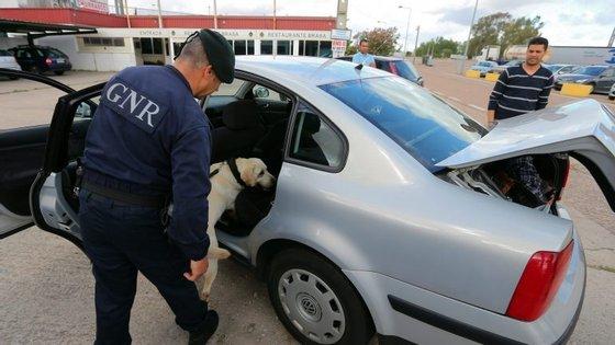 Nove pessoas foram detidas por tráfico de droga