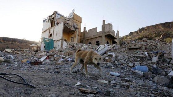 Prossegue a busca de desaparecidos sob os escombros da habitação
