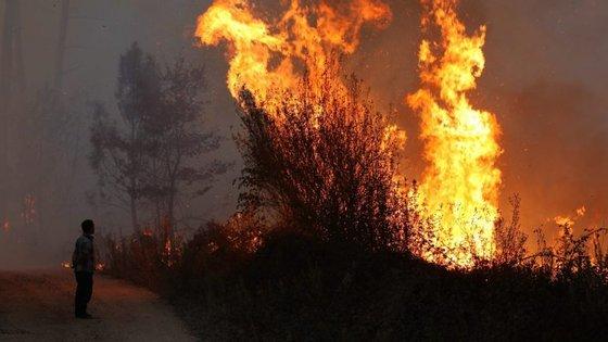 O incêndio do Sabugal já entrou em fase de resolução