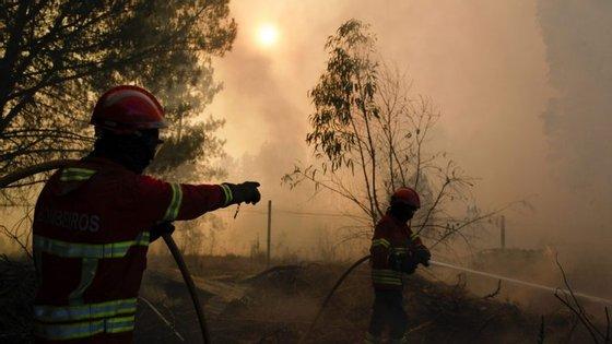Fogo começou às 15h06 na localidade de Carranqueira, freguesia de Pepim