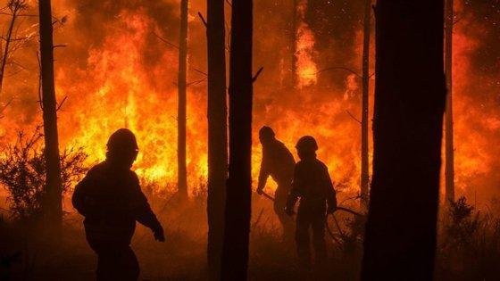 A Proteção Civil registou mais de 500 fogos florestais no domingo