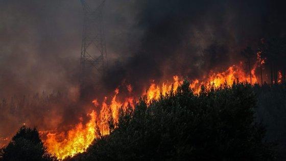 Este ano, a PJ já identificou e deteve 108 pessoas pela autoria do crime de incêndio florestal