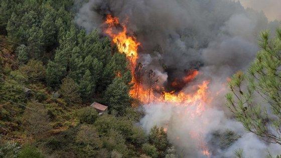Os incêndios deste domingo fizeram 43 mortos e 70 feridos