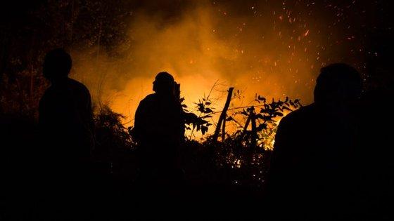 O distrito de Viseu foi um dos mais fustigados pelos incêndios de outubro