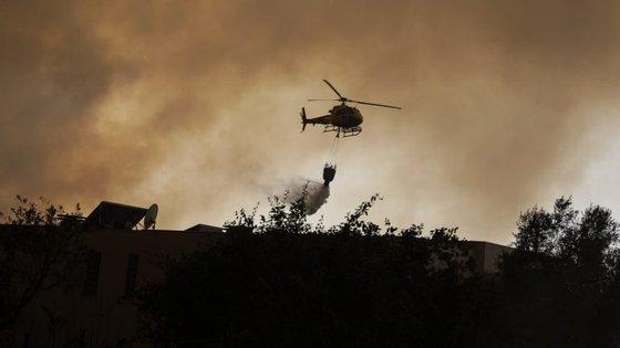 Os incêndios florestais provocaram mais de 100 mortes, este ano.
