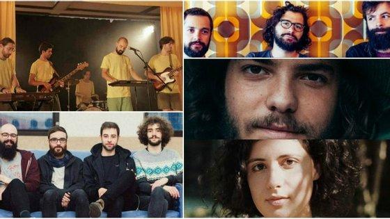 Planeta Tundra, quartoquarto, Jerónimo, Caio e Mathilda são os finalistas deste ano