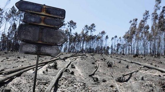 """Portugal aparece """"claramente no mapa"""" como um dos países onde se verificaram as maiores perdas por incêndios florestais"""