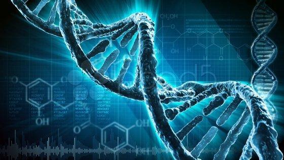 A ligação genética entre marido e mulher só começou a recuar a partir de 1875