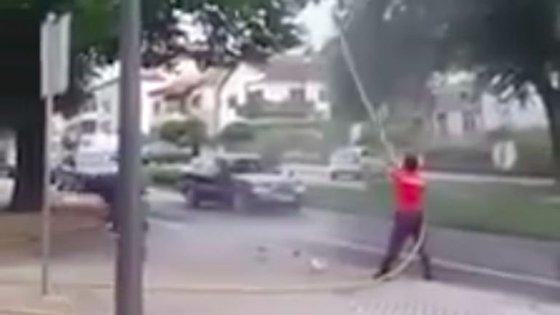Bombeiro voluntário de Ponte de Lima usou jatos de água para retirar um gato de cima de uma árvore