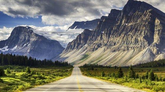 Além das paisagens intermináveis, Alberta tem condutores que até mudam sexo para economizar 67€ por mês
