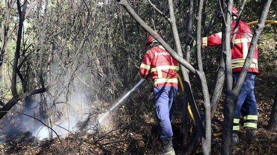 O alerta foi dado pelas 17h20, estando os bombeiros no terreno a ser auxiliados por treze viaturas