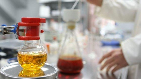 Os investigadores seleccionados podem só conseguir assinar contrato no final de dezembro