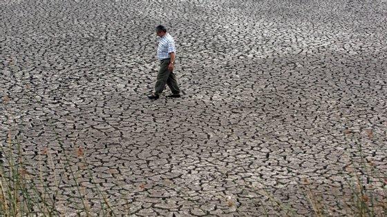 O Tribunal de Contas Europeu defende que não existe uma estratégia a nível da União Europeia para o combate à desertificação e à degradação dos solos