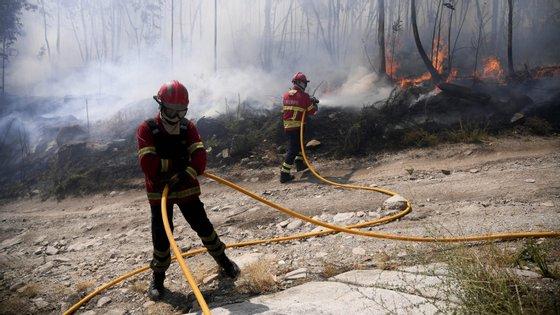 """Inspecção-Geral da Administração Interna admite """"um comportamento padronizado em todas as ocorrências de incêndios florestais"""". Agora quer que Ministério Público investigue"""